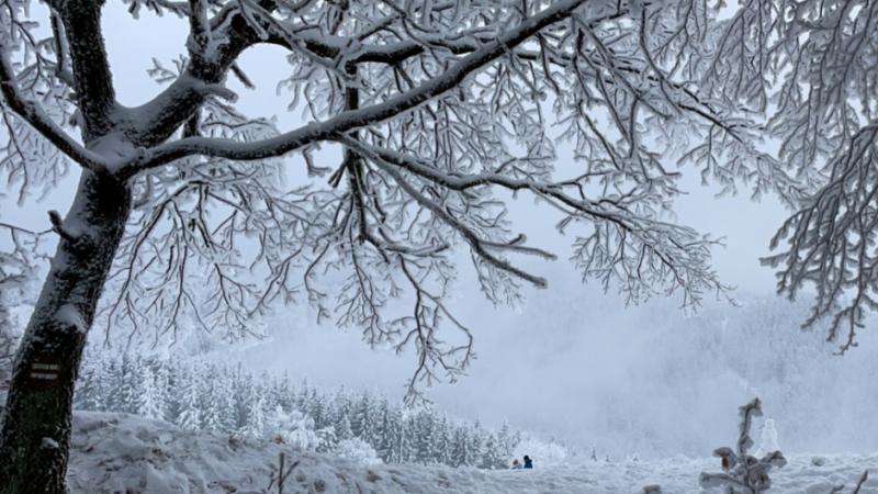 Zimowa refleksja wierszem.